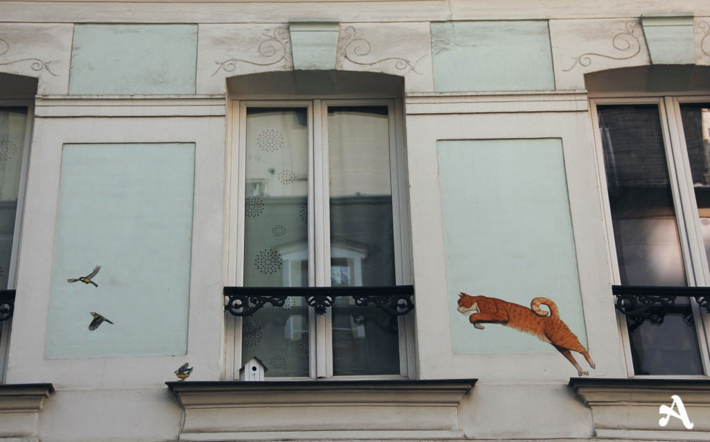 rue_cremieux_chat