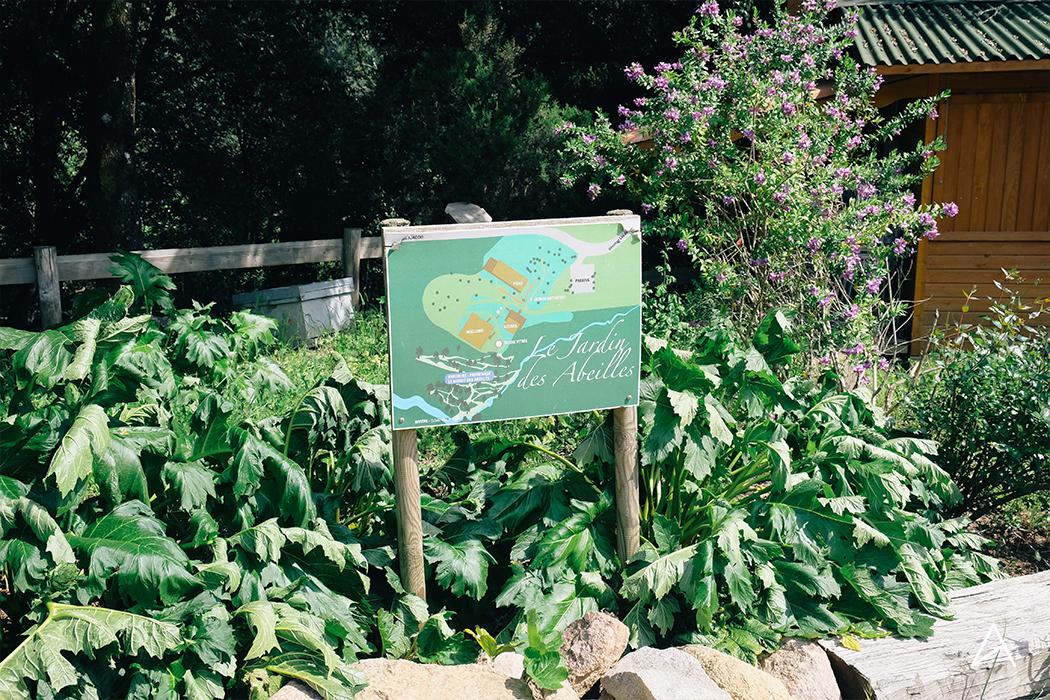 jardin_abeilles_1