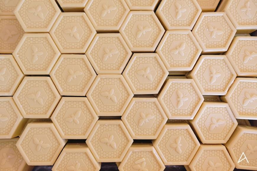 jardin_abeilles_2 copy