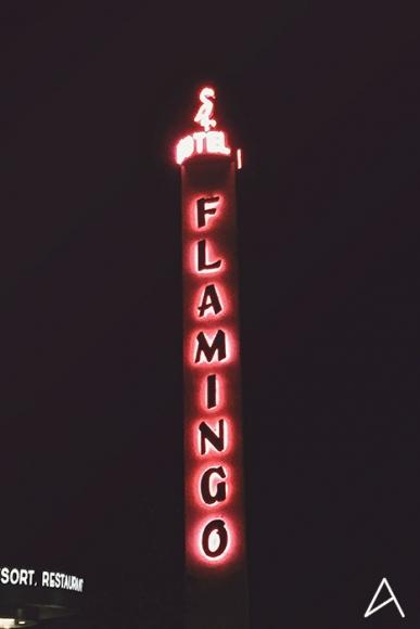 Flamingo_Hotel_Santa_Rosa_16