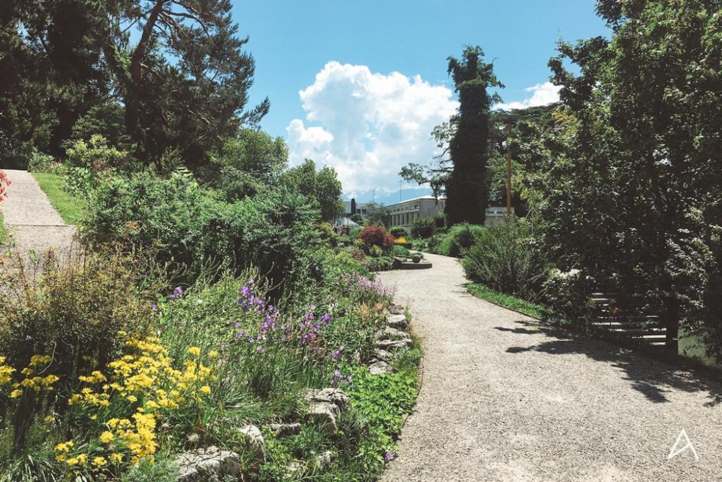 Jardin_botanique_Lausanne_10