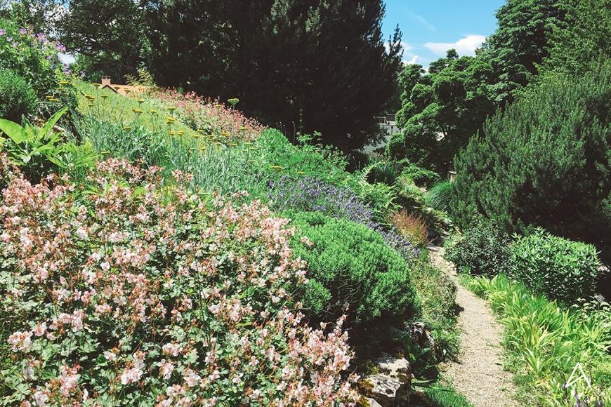 Jardin_botanique_Lausanne_8