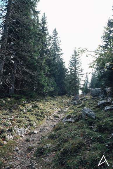 Mollendruz_Marchairuz_Mont_Tendre_65