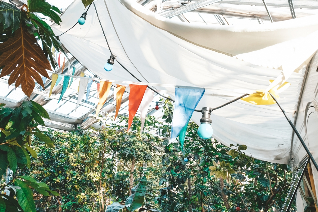 Le Rollhotel arbore une décoration estivale